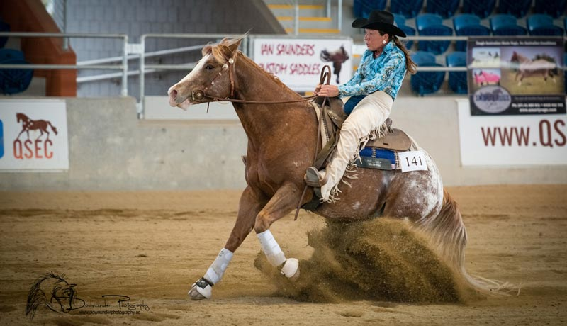 Sportaloosa riding incentives, year end and lifetime high point awards